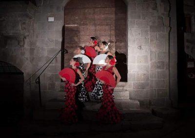 Fantasia Flamenca3