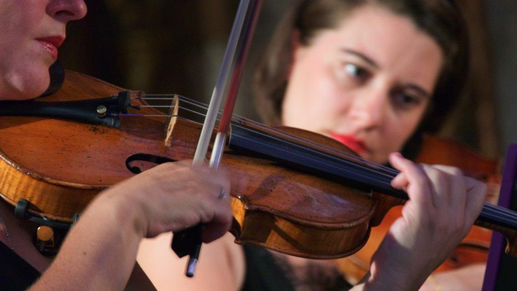 violino chiesa